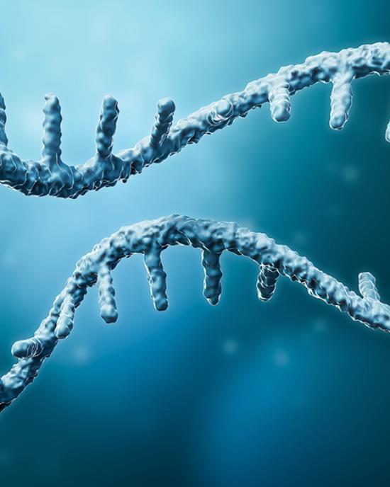 Apostle MiniMax High Efficiency cf-RNA Isolation Kit (250uL x 50 preps)